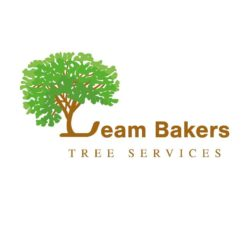 Leam Bakers Tree Services